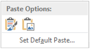 Paste options for images